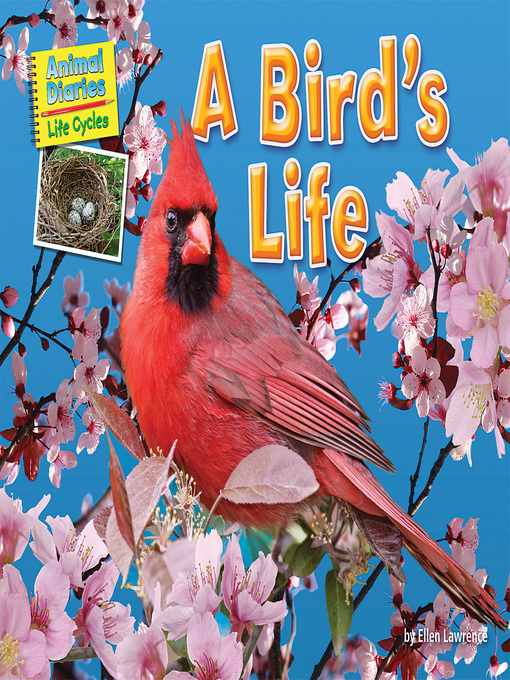 Title details for A Bird's Life by Ellen Lawrence - Available