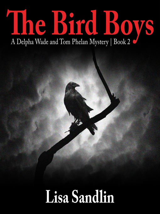 Title details for The Bird Boys by Lisa Sandlin - Available
