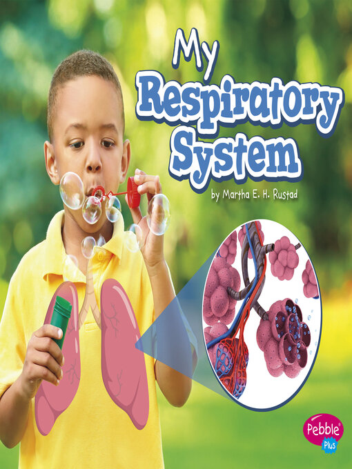 Cover of My Respiratory System