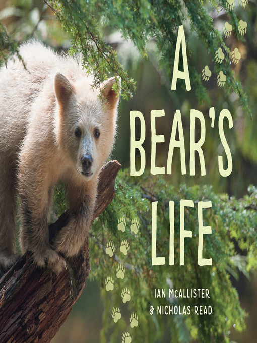 Cover of A Bear's Life