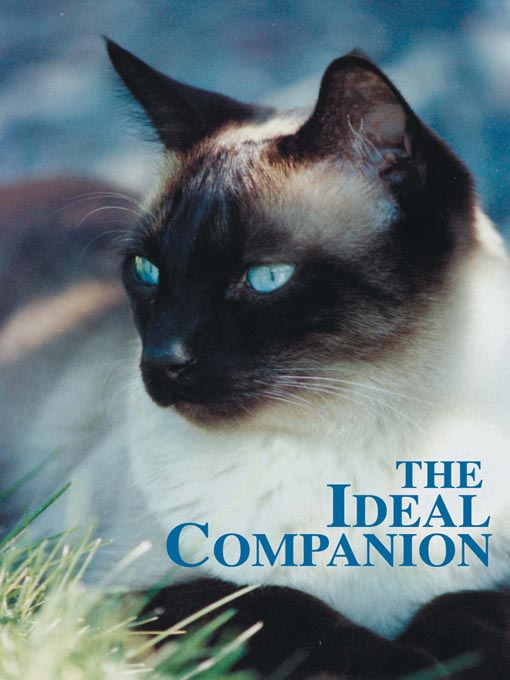 Title details for The Ideal Companion by Videoframe Communications. Ltd. - Available