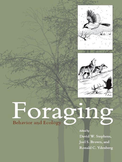 foraging animals pdf
