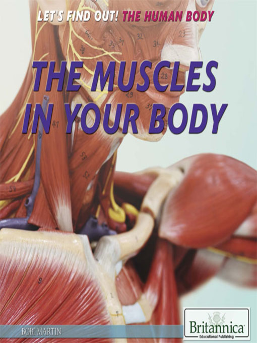 The Muscles In Your Body Ok Virtual Library Overdrive