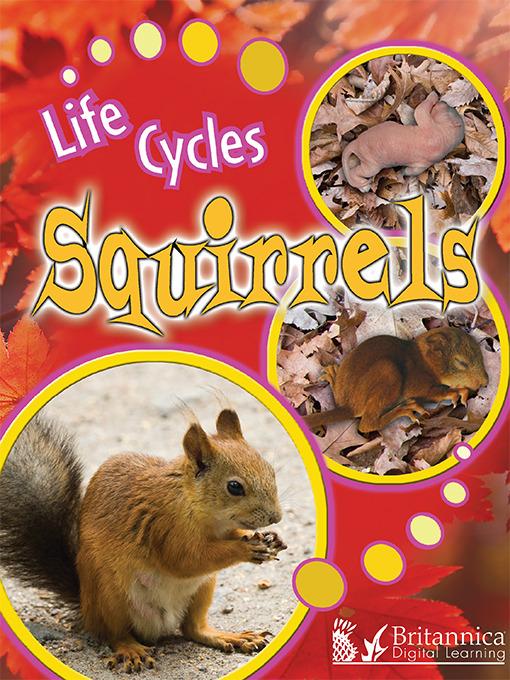 Title details for Squirrels by Julie K. Lundgren - Available