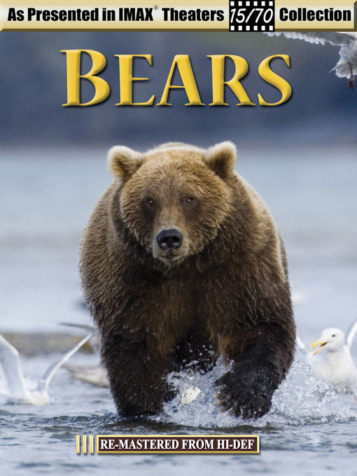 Title details for Bears by MagicPlay Entertainment - Wait list