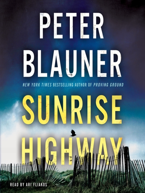 Title details for Sunrise Highway by Peter Blauner - Wait list
