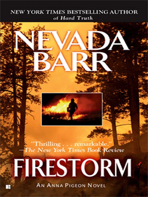 Title details for Firestorm by Nevada Barr - Available