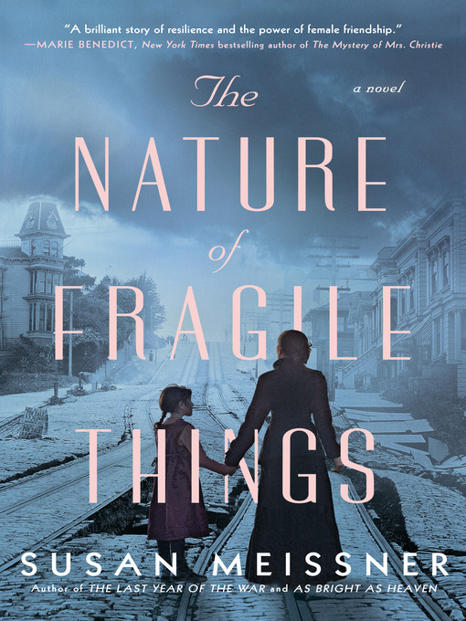 Title details for The Nature of Fragile Things by Susan Meissner - Wait list