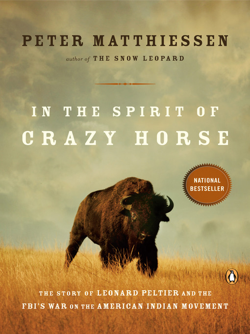 a brief review of the story of the crazy horse electric game
