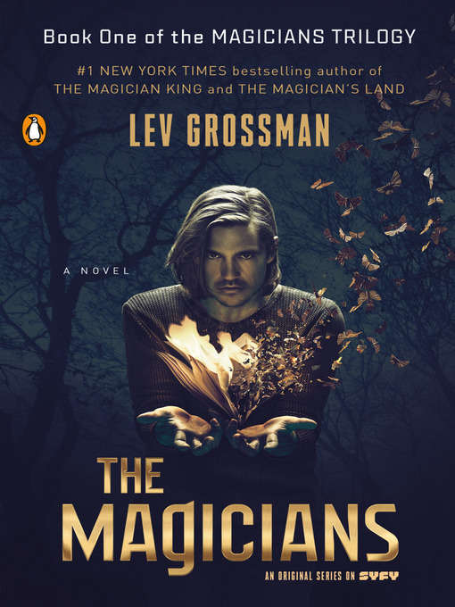 Title details for The Magicians by Lev Grossman - Wait list