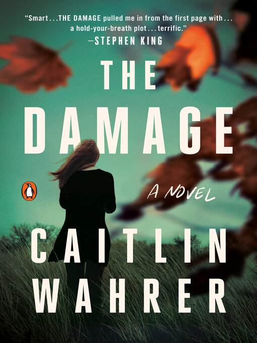 Title details for The Damage by Caitlin Wahrer - Wait list