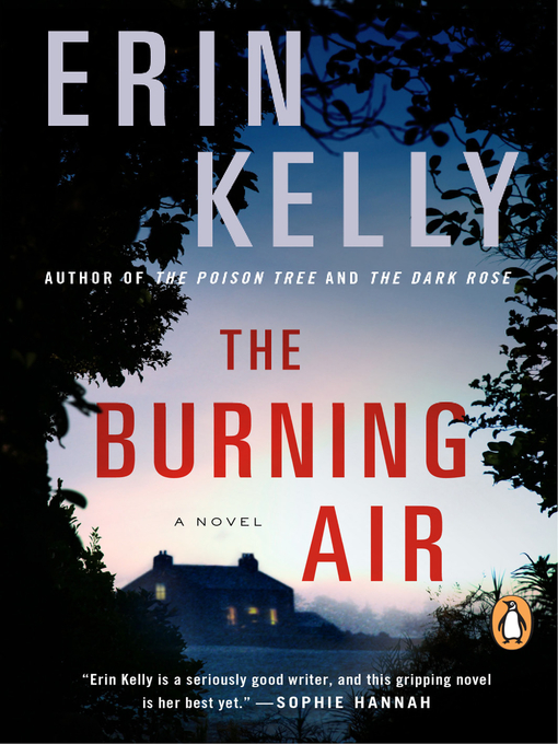 Title details for The Burning Air by Erin Kelly - Wait list