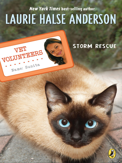 Title details for Storm Rescue by Laurie Halse Anderson - Available
