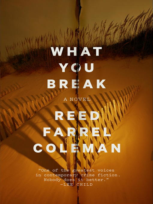 Title details for What You Break by Reed Farrel Coleman - Available