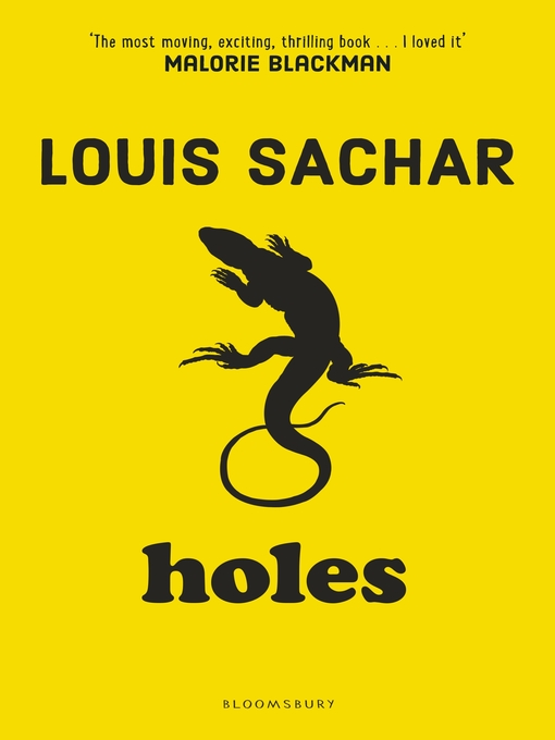 Cover of Holes