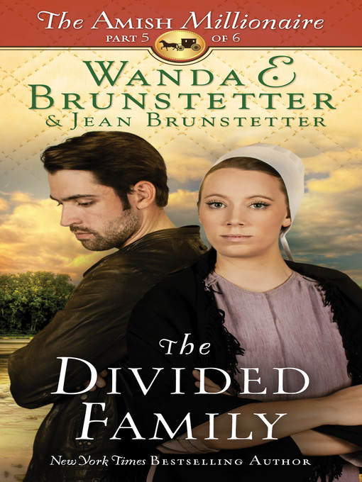 Title details for The Divided Family by Wanda E. Brunstetter - Wait list