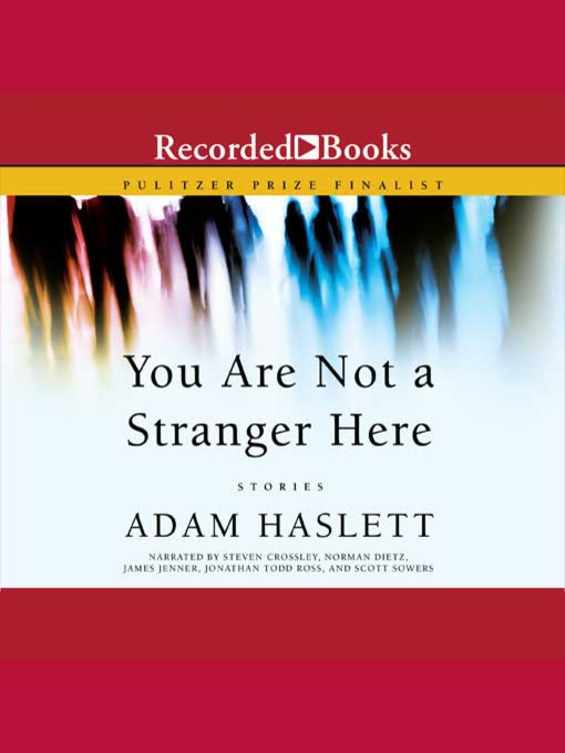 Title details for You Are Not a Stranger Here by Adam Haslett - Wait list