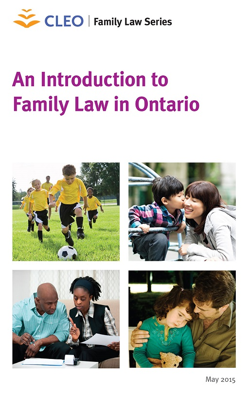 an introduction of family law Description: an introductory course for attorneys dabbling in military family law megan explores how military divorce and family law cases may differ from other family law cases- what to look for and how to go about respresenting your client.
