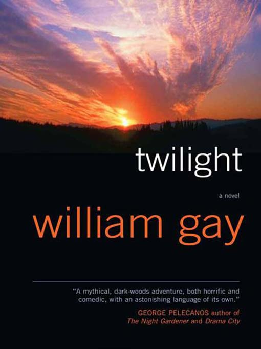 Title details for Twilight by William Gay - Available