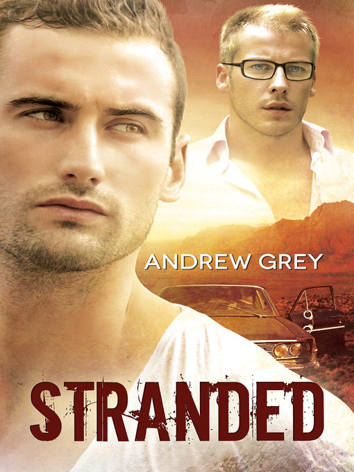 Title details for Stranded by Andrew Grey - Available