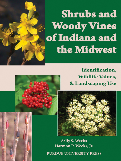 Title details for Shrubs and Woody Vines of Indiana and the Midwest by Sally S. Weeks - Available