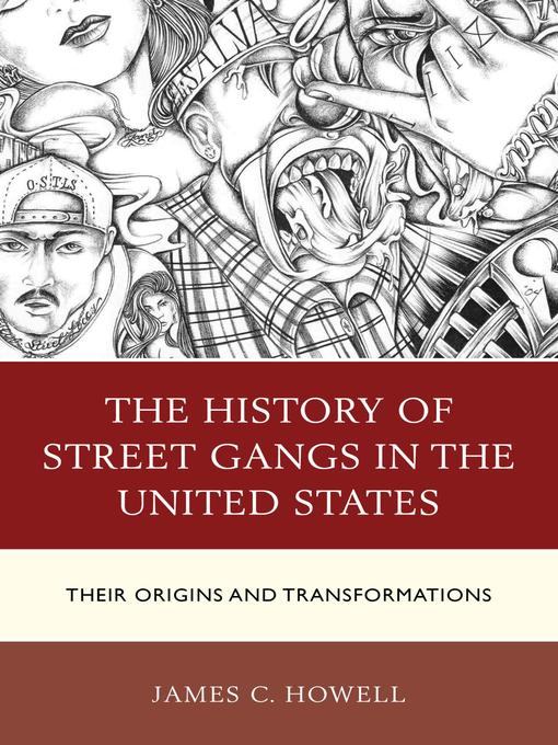 an overview of the issue of gang violence in the united states The nature of gang violence: an overview of gangs by howell (1998) summarizes many of the major findings with regards to gangs and violence though issues related to turf and respect motivates most gang-on-gang violence, surprisingly, disputes over drug markets play a minor role.