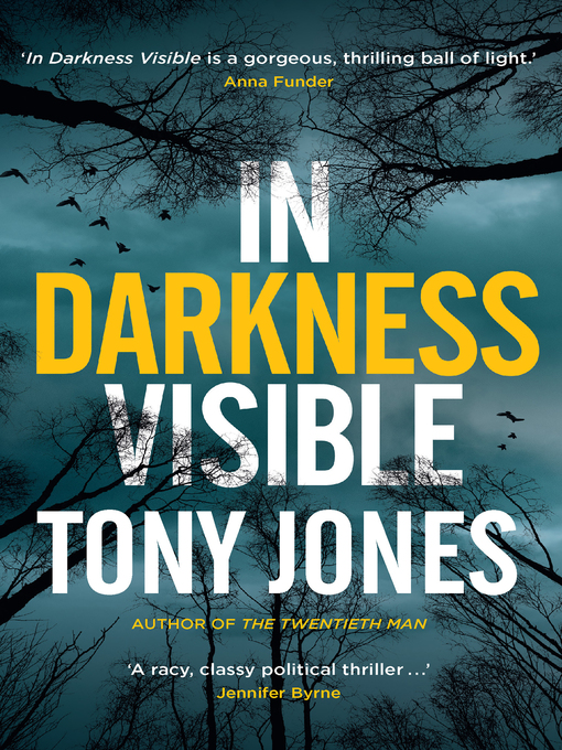 Title details for In Darkness Visible by Tony Jones - Available