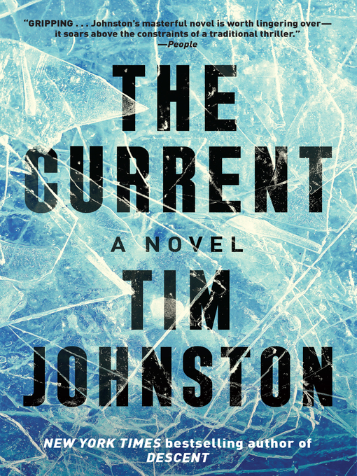 Title details for The Current by Tim Johnston - Available