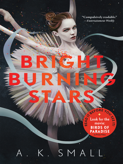 Title details for Bright Burning Stars by A.K. Small - Available