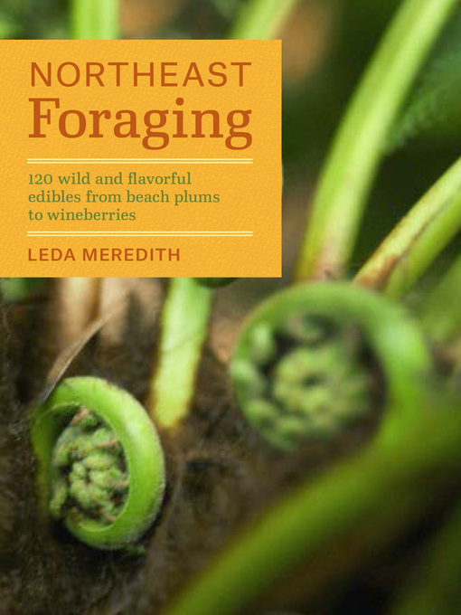 Title details for Northeast Foraging by Leda Meredith - Available