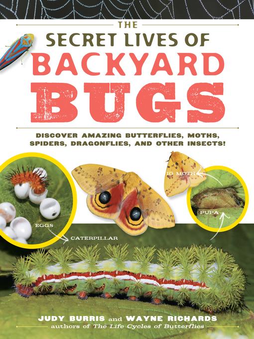 Title details for The Secret Lives of Backyard Bugs by Judy Burris - Wait list