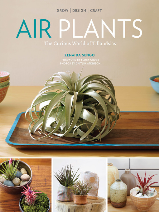 Title details for Air Plants by Zenaida Sengo - Wait list
