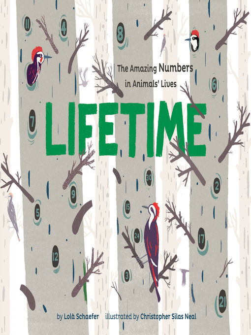 Title details for Lifetime by Lola M. Schaefer - Available