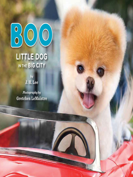 Title details for Boo by J. H. Lee - Available