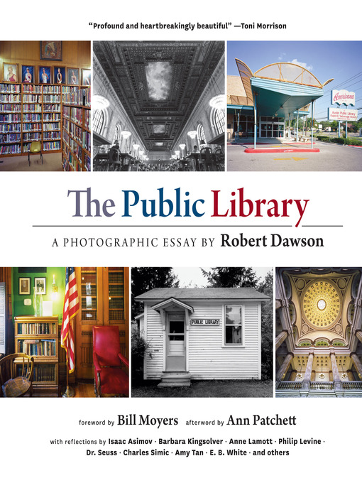 Title details for The Public Library by Robert Dawson - Available