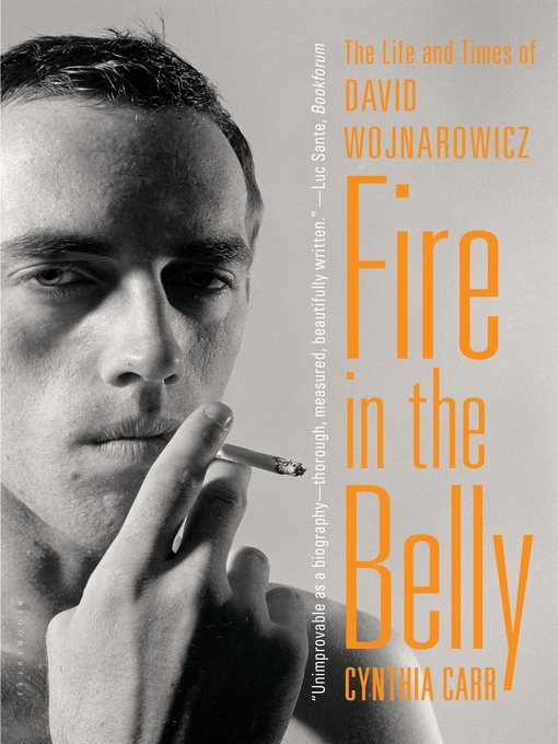 Title details for Fire in the Belly by Cynthia Carr - Available