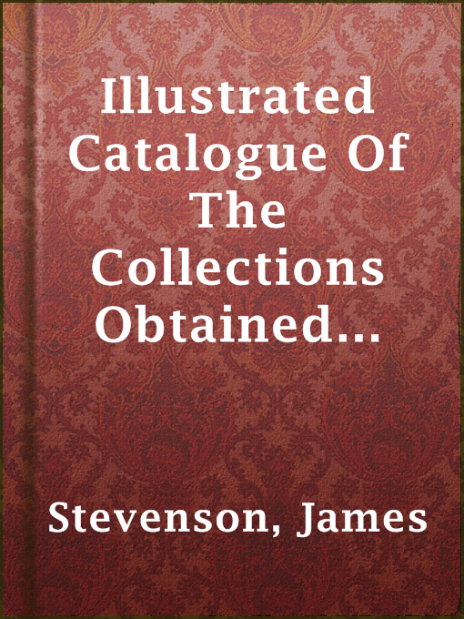 Title details for Illustrated Catalogue Of The Collections Obtained From The Indians Of New Mexico And Arizona In 1879 by James Stevenson - Wait list