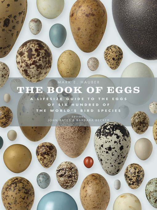 Title details for The Book of Eggs by Mark E. Hauber - Available