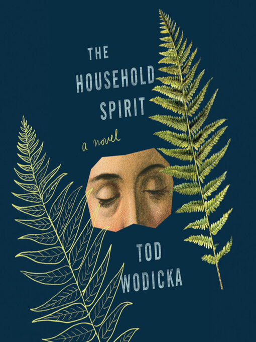 Title details for The Household Spirit by Tod Wodicka - Available