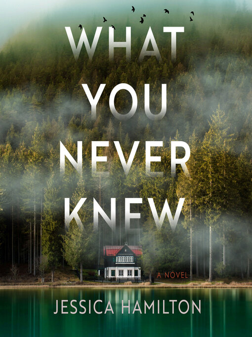 Title details for What You Never Knew by Jessica Hamilton - Wait list