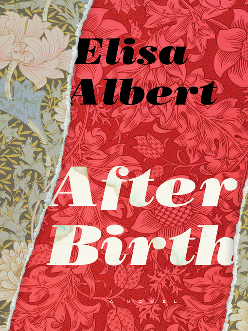 Title details for After Birth by Elisa Albert - Available