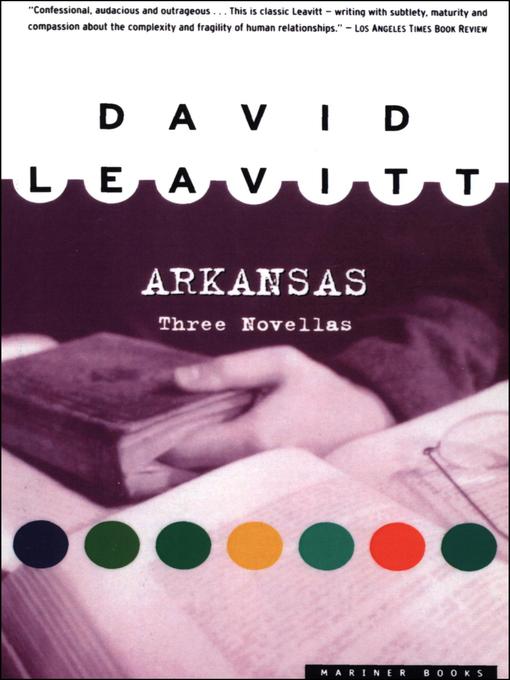 Title details for Arkansas by David Leavitt - Available