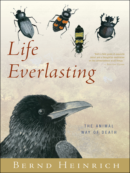 Cover of Life Everlasting