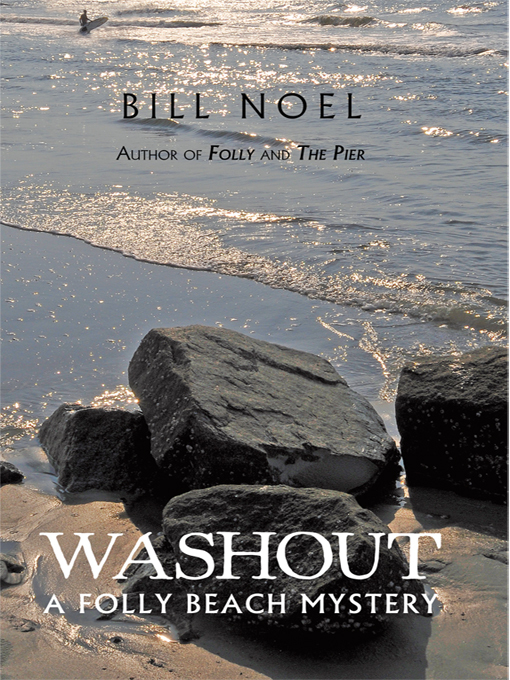 Title details for Washout by Bill Noel - Wait list