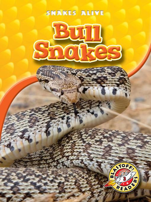 Title details for Bull Snakes by Ellen Frazel - Available