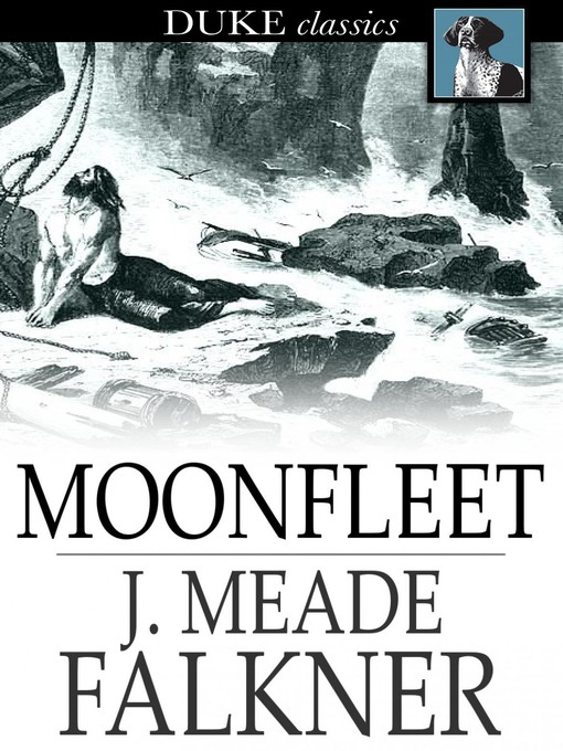 Cover image for Moonfleet