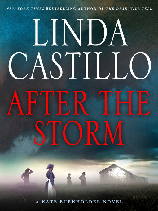 Title details for After the Storm by Linda Castillo - Wait list
