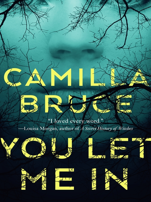 Title details for You Let Me In by Camilla Bruce - Wait list