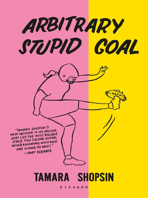 Cover of Arbitrary Stupid Goal