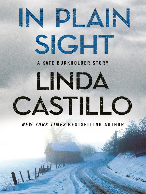 Title details for In Plain Sight by Linda Castillo - Wait list